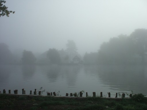 Cookham - grey - mist