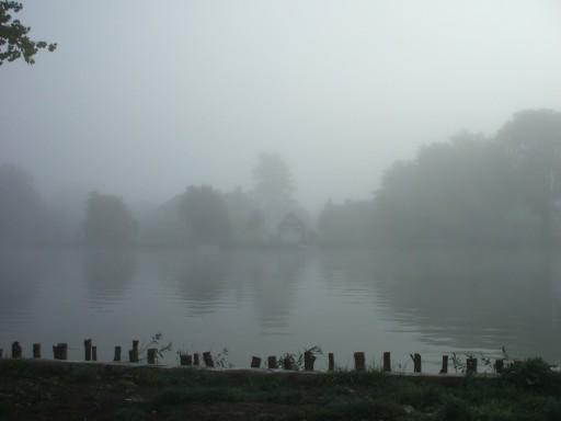 Cookham - grey - mist
