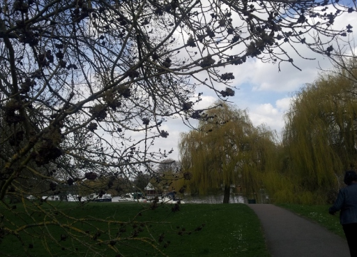Thames 21.4.13 (800x576)