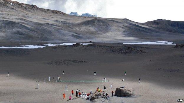 kilimanjaro cricket BETTER