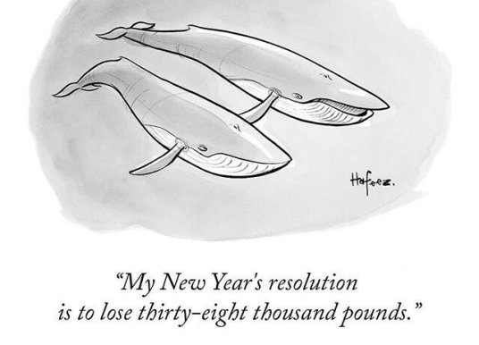 new yorker whale New year